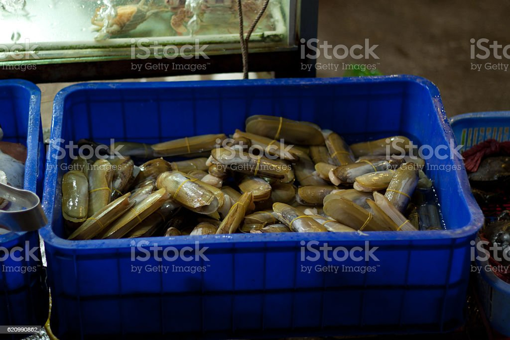 seafood in night market in Phu Quoc Island foto royalty-free