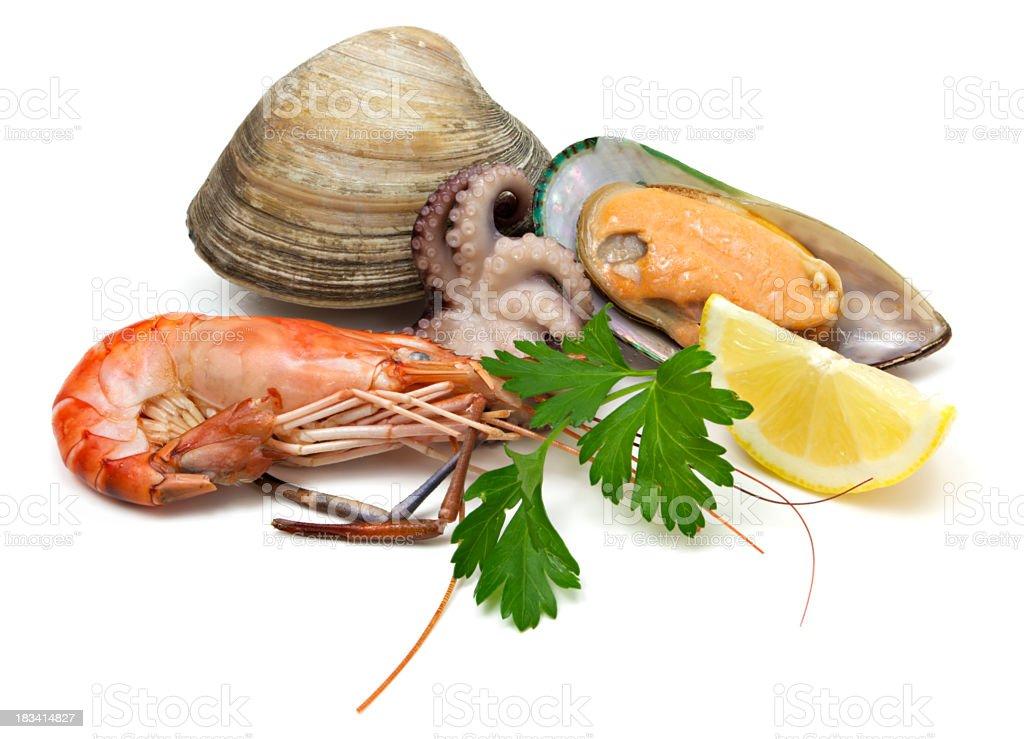 Seafood ingredients stock photo