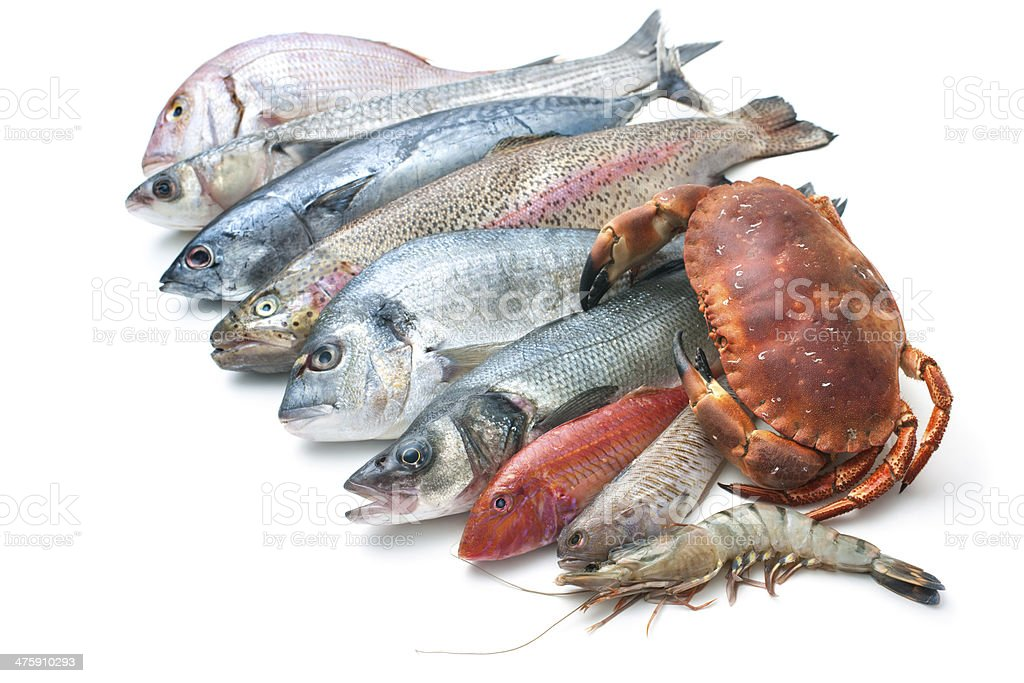 seafood isolated on white background stock photo