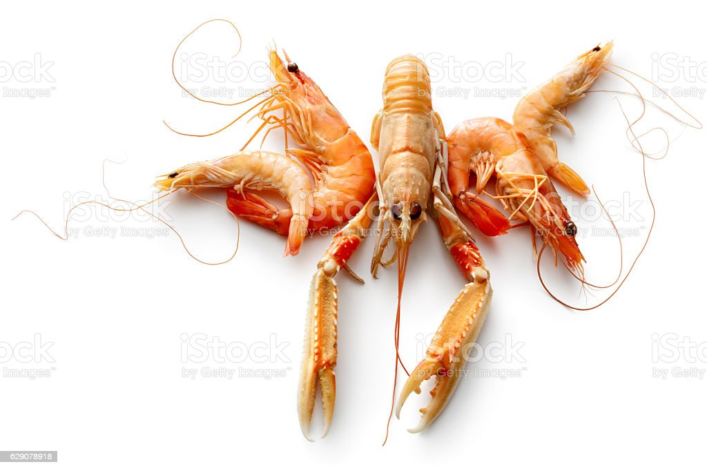 Seafood: Langoustine, Prawn and Shrimp Isolated on White Background stock photo