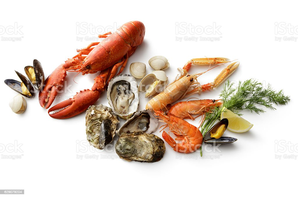 Seafood: Lobster, Langoustine, Shrimps, Oyster, Mussels and Clams Isolated stock photo