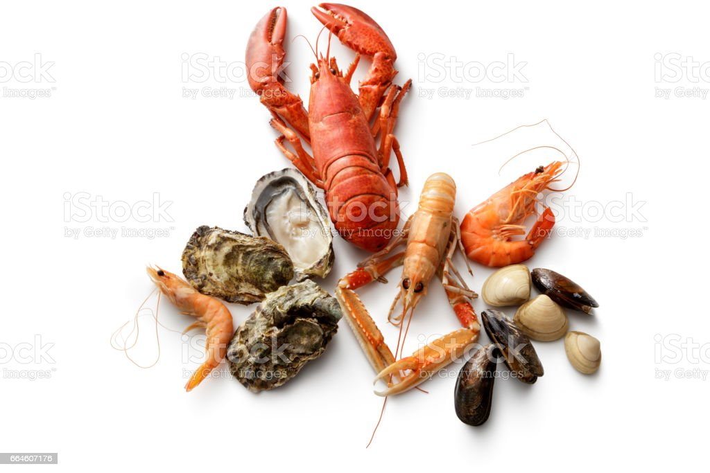 Seafood: Lobster, Langoustine, Shrimps, Oysters, Mussels and Clams on White stock photo