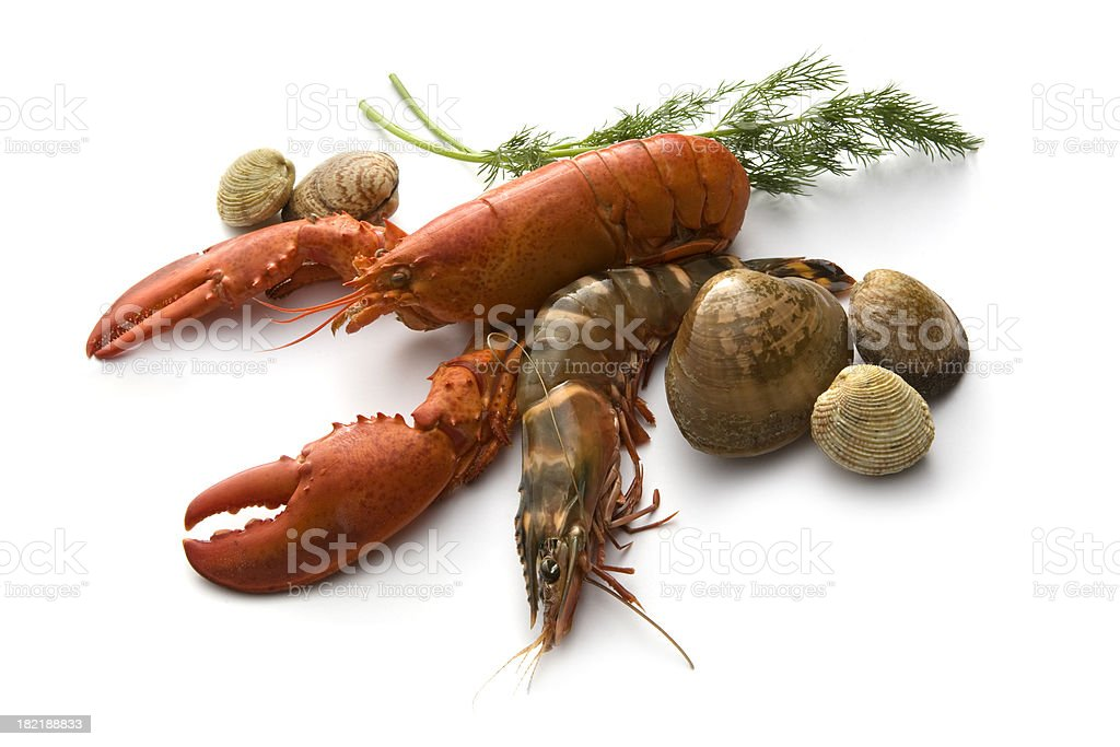 Seafood: Lobster, Prawn, Clams and Dill stock photo