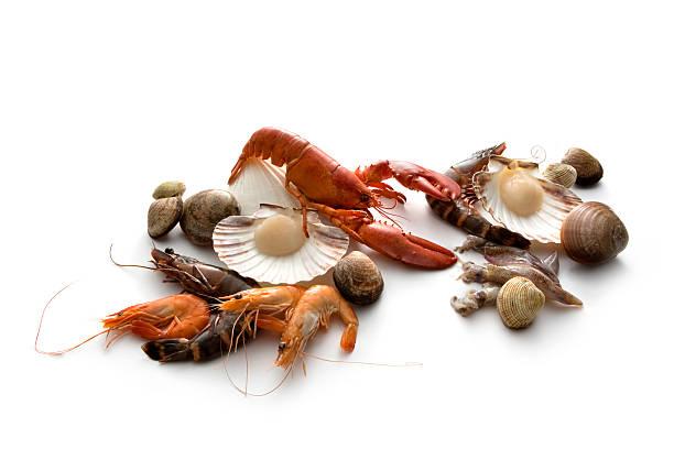 meeresfrüchte: hummer, garnelen, krabben und meeresfrüchte - krustentiere stock-fotos und bilder