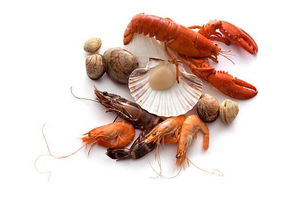 meeresfrüchte: hummer, garnelen, krabben annd meeresfrüchte - krustentiere stock-fotos und bilder
