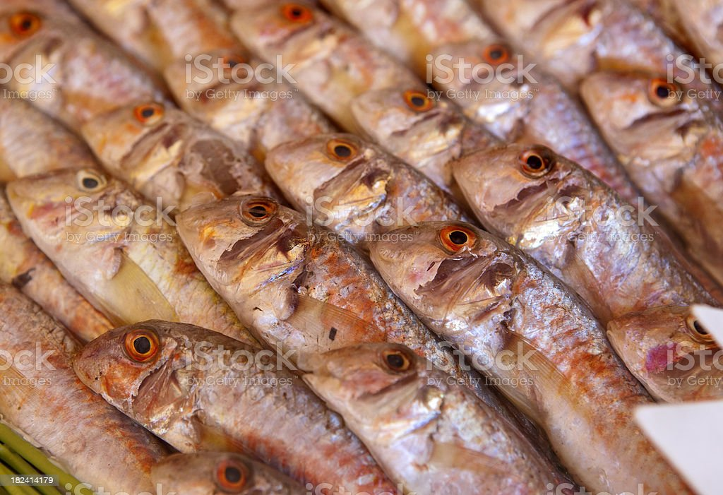 Seafood Market in France royalty-free stock photo