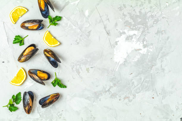 Seafood mussels, lemon and parsley on gray concrete surface stock photo
