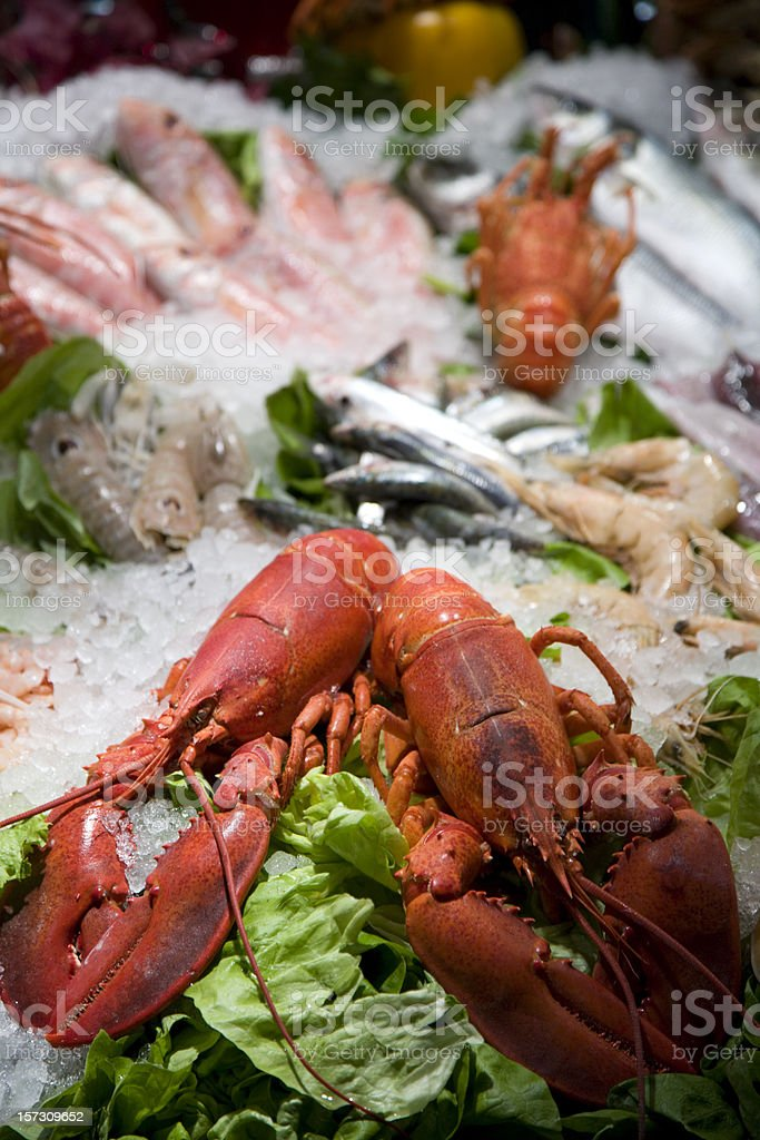 Seafood on display.... royalty-free stock photo