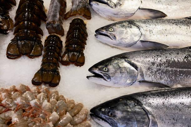 Seafood on Ice at Fish Market stock photo