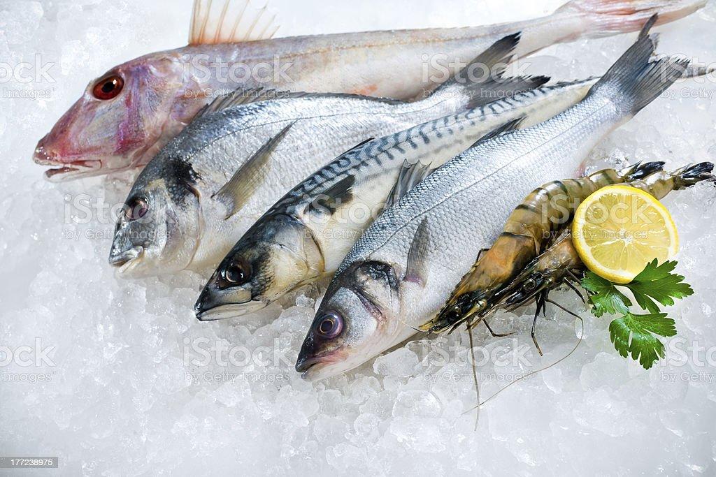 Pescados y mariscos en el hielo - Foto de stock de Alimento libre de derechos