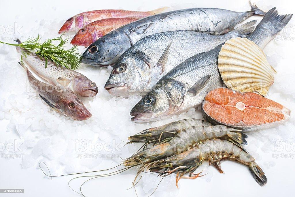 Pescados y mariscos en el hielo - foto de stock