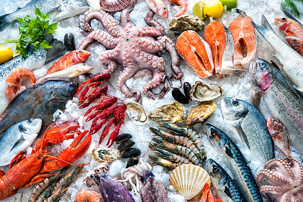 Seafood on ice picture id520490716?b=1&k=6&m=520490716&s=612x612&w=0&h=jfhowbylmbv6hlhde5ejlkheia5h3lpy ivfqfwvmiw=