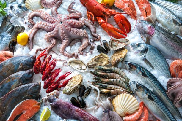 fruits de mer sur glace - produit de la mer photos et images de collection