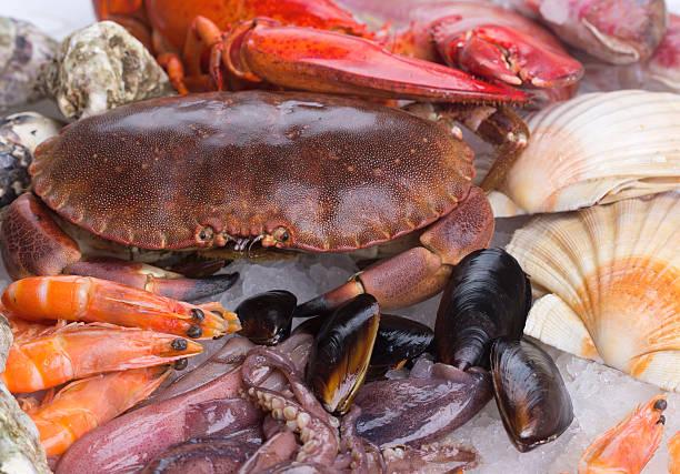 kepiting, udang dan kerang - seafood - crab - shrimp