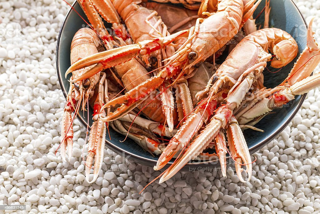 Seafood served on the beach stock photo