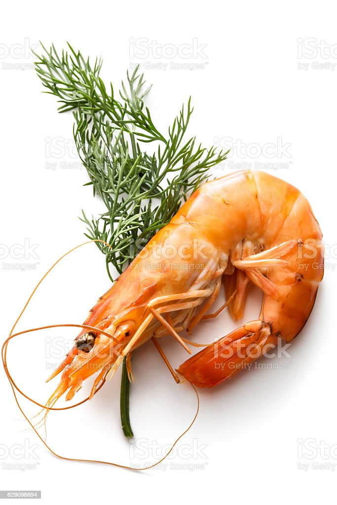 Seafood: Shrimp and Dill Isolated on White Background stock photo