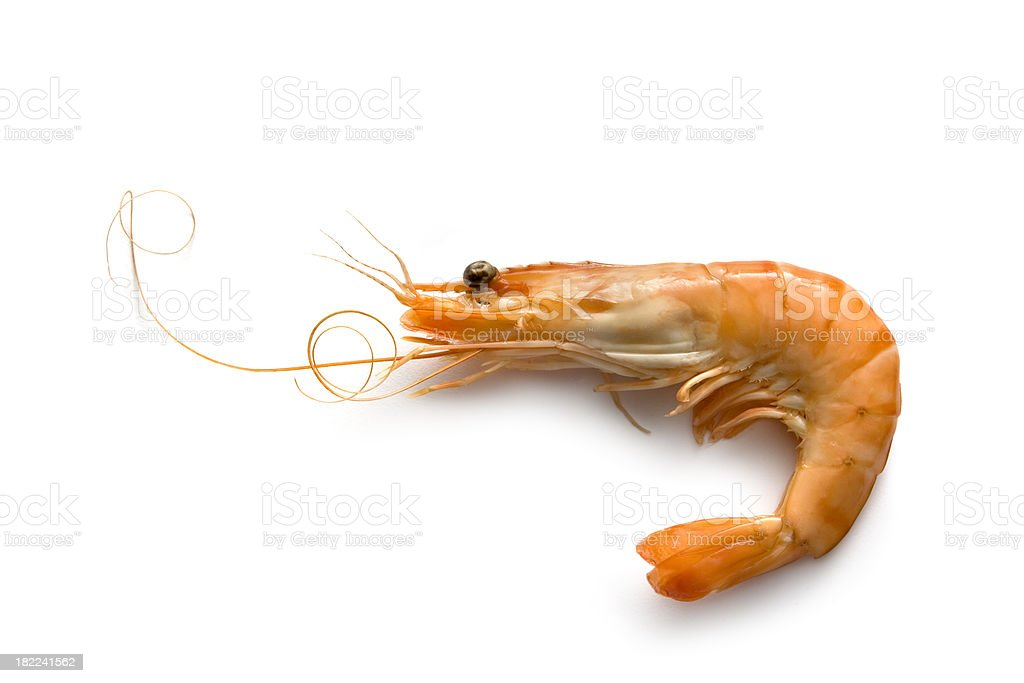 Seafood: Shrimp royalty-free stock photo