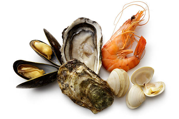 seafood: shrimps, prawn, mussels and clams isolated on white background - krustentiere stock-fotos und bilder