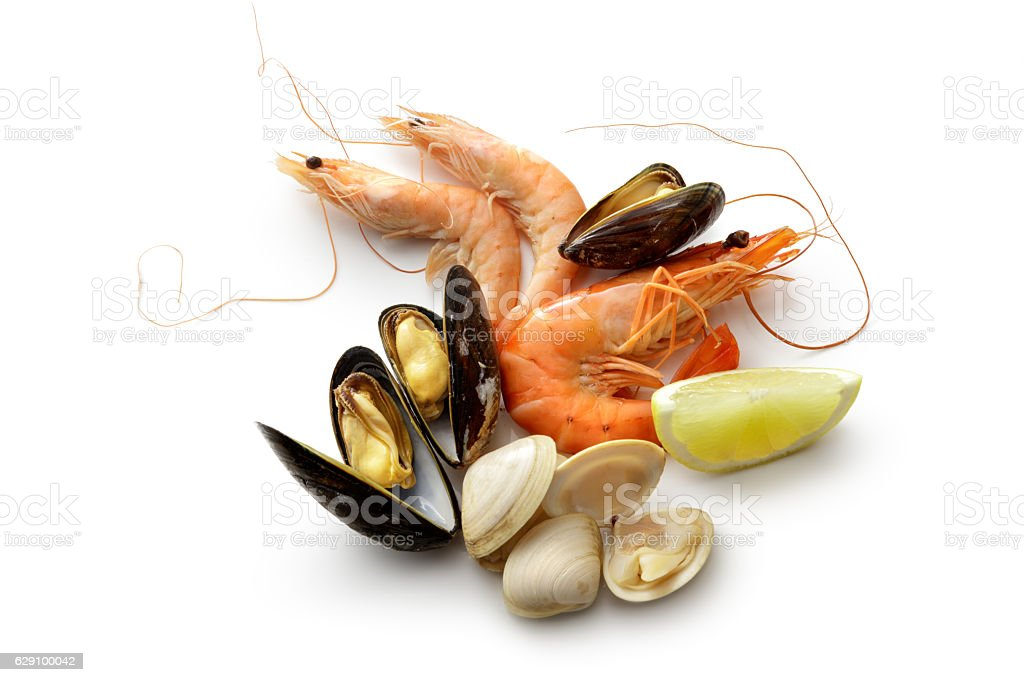 Seafood: Shrimps, Prawn, Mussels and Clams Isolated on White Background stock photo