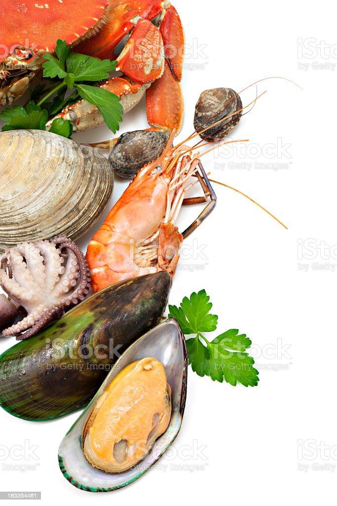 Seafood variety stock photo