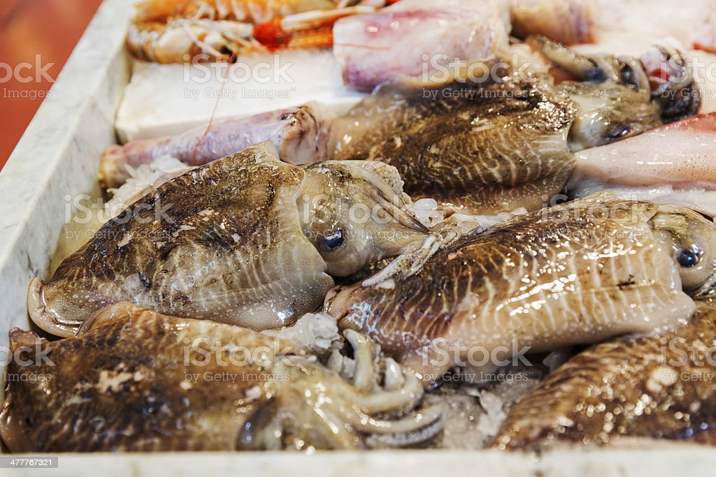 Seafood variety royalty-free stock photo