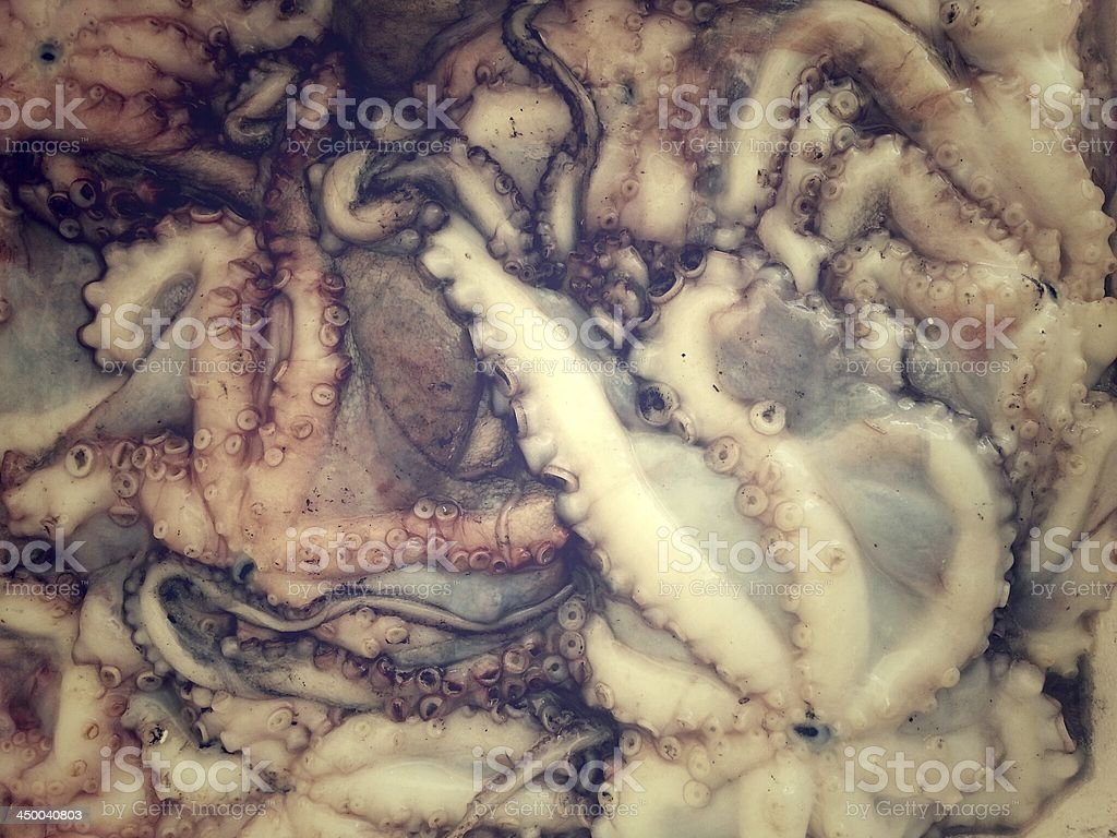 Seafoods in market royalty-free stock photo