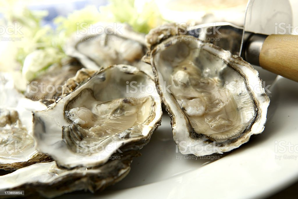 SeafoodStills: Oysters royalty-free stock photo