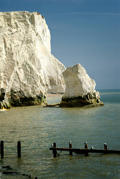 Seaford Chalk Cliffs stock photo