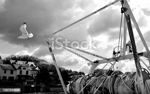 Fishing boat and a seagull viewed at Port-En-Bessin (France)