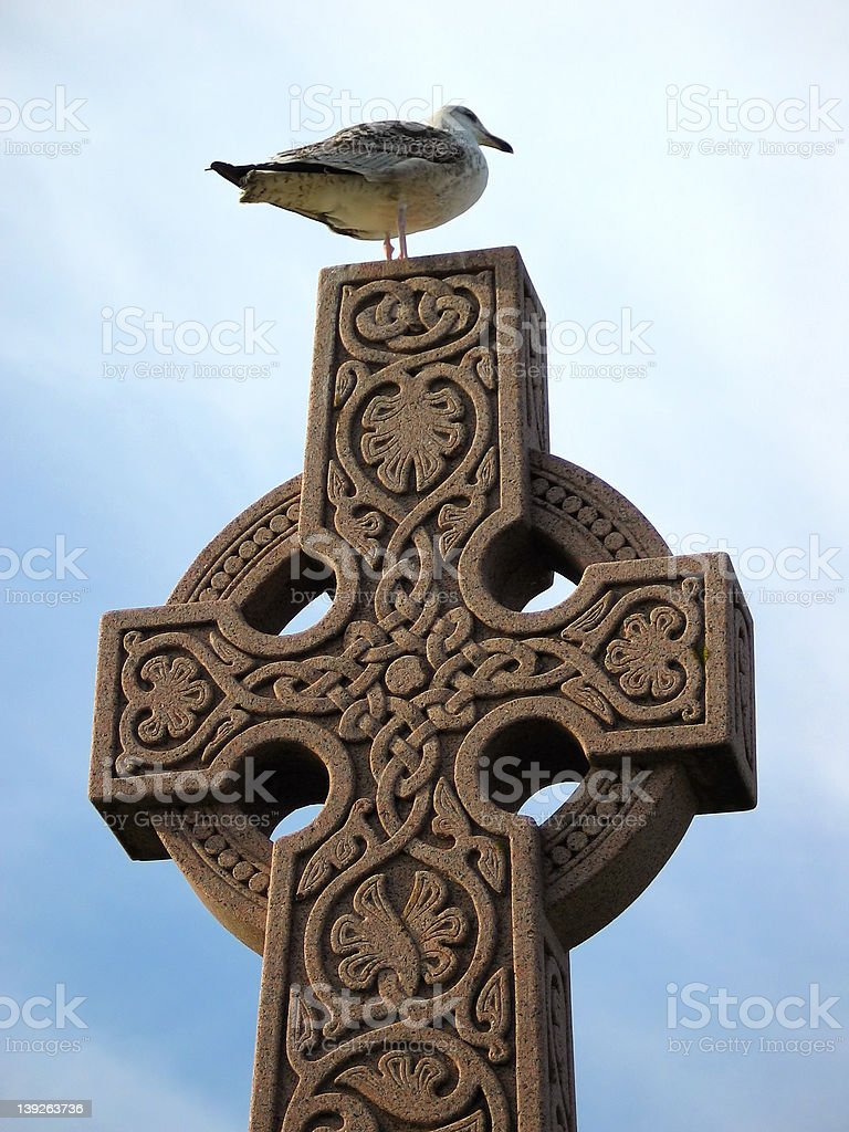 Seagull on a Celtic Cross royalty-free stock photo