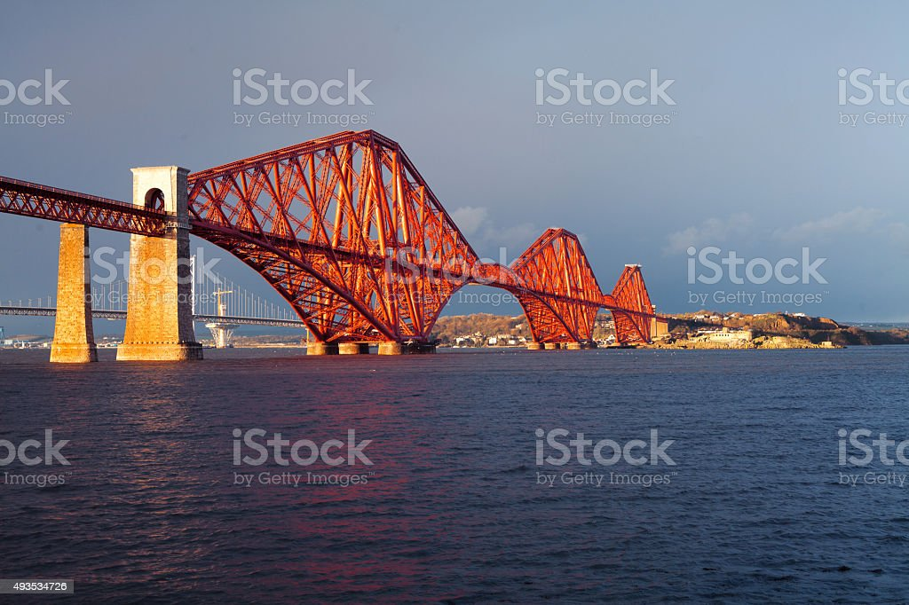 Seagull on Firth of Forth Rail Bridge stock photo