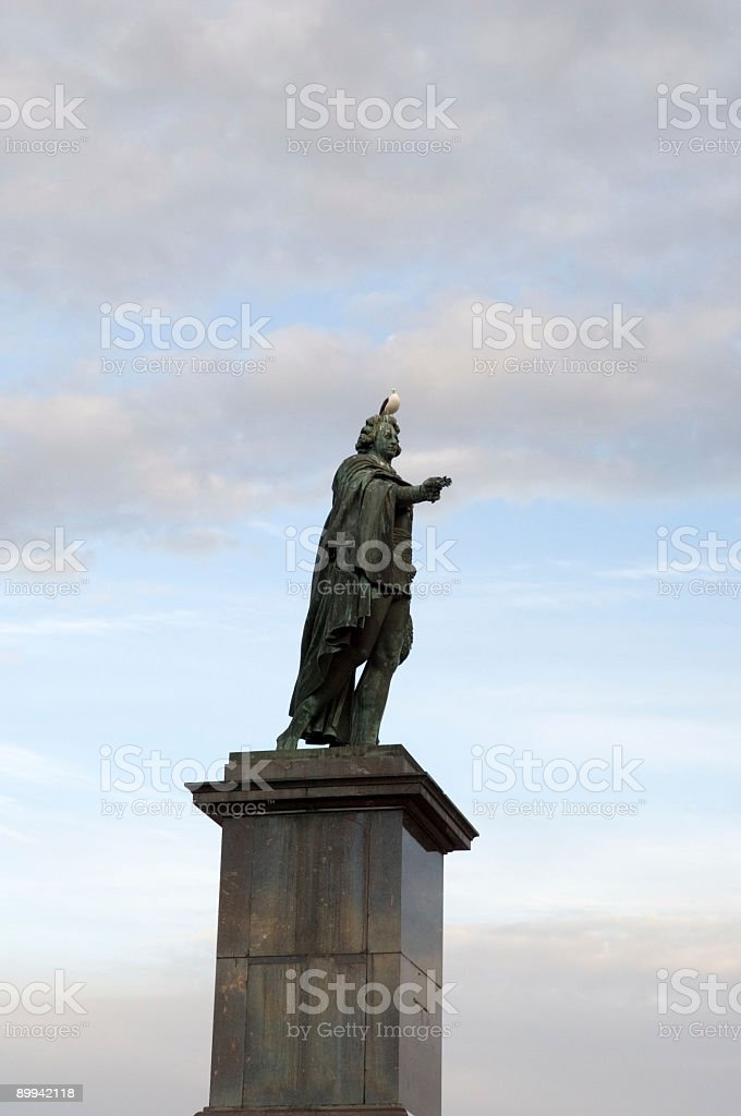 seagull on king head stockholm sweden royalty-free stock photo