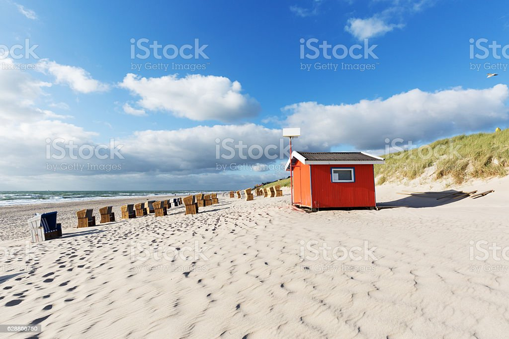 Seagull passing by at Wenningstedt Beach/ Germany stock photo