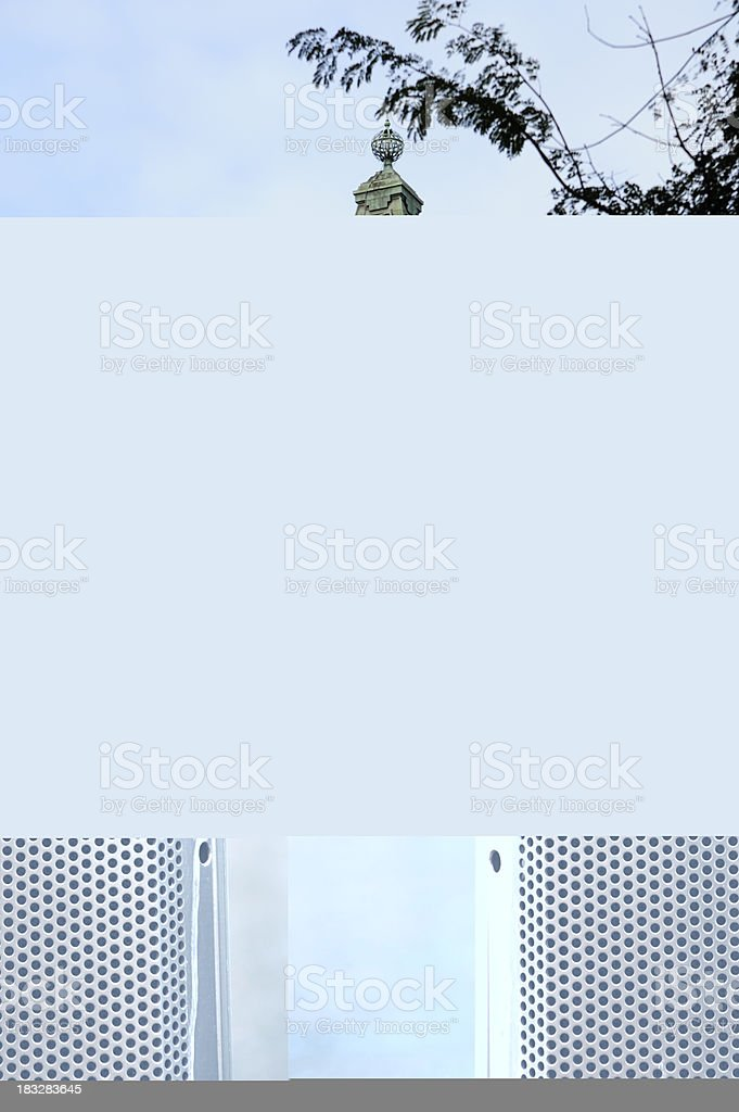 Seagull waiting royalty-free stock photo