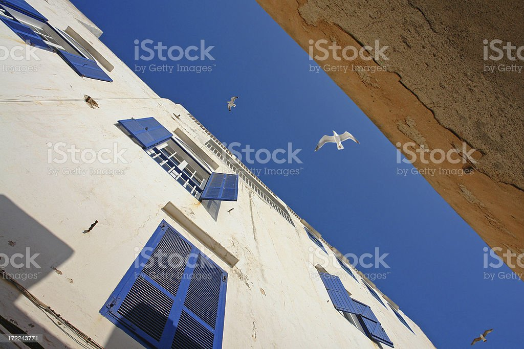 Seagulls above Narrow Moroccan Street in Essaouria royalty-free stock photo