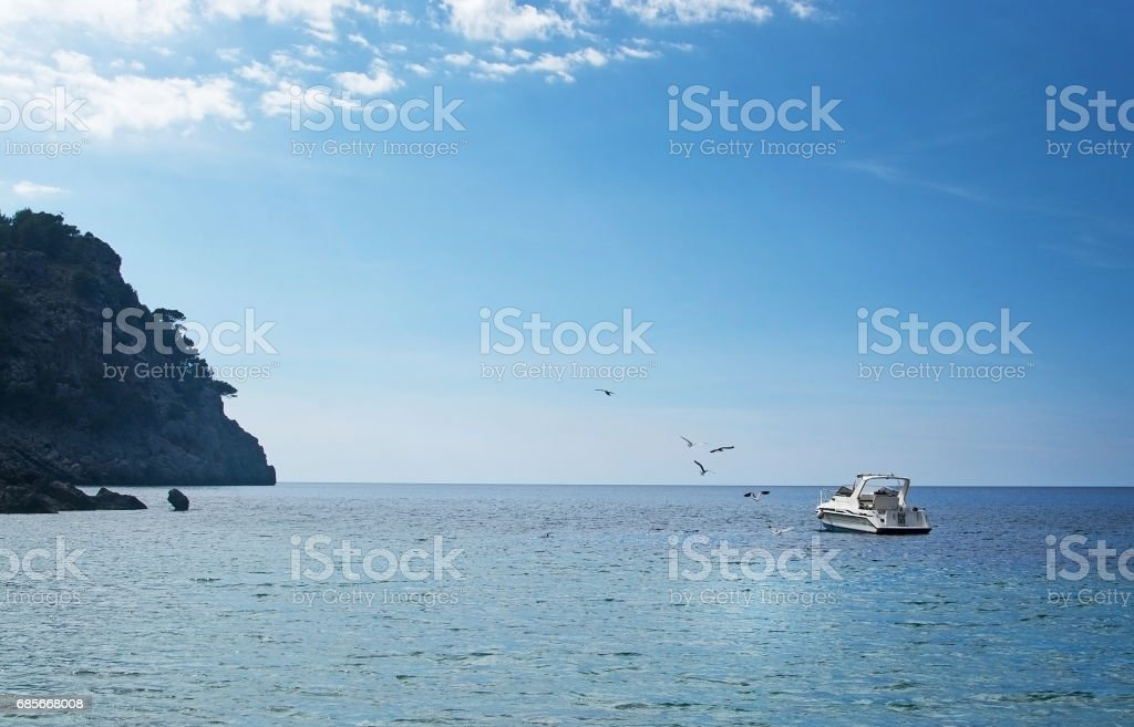 Seagulls fly around boat royalty-free 스톡 사진