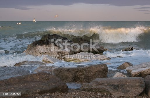 istock Seagulls flying over stormy sea in the Marche region 1131995758