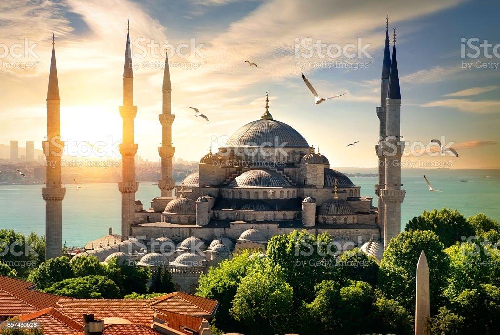 Martılar üzerinde Sultanahmet Camii - Royalty-free Akşam karanlığı Stok görsel