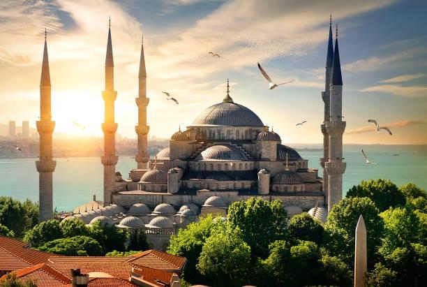 Möwen über blaue Moschee – Foto