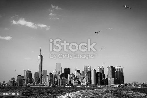 Black and white image of seagulls over Manhattan. New York City skyline panorama