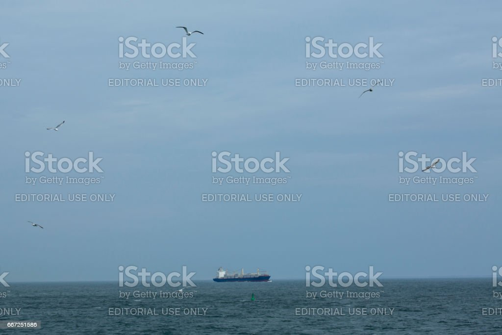 Seagulls soaring near a container ship, mouth of Delaware River. stock photo