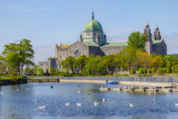 Seagulls swimming in Corrib river and Galway Cathedral stock photo