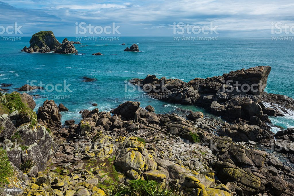 Seal Colony in Cape Foulwind, New Zealand stock photo