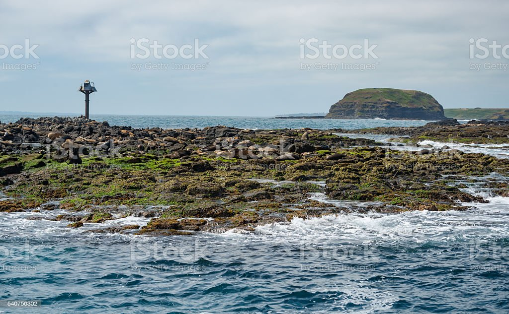 Seal rock and the Nobbies of Phillip island Australia. stock photo