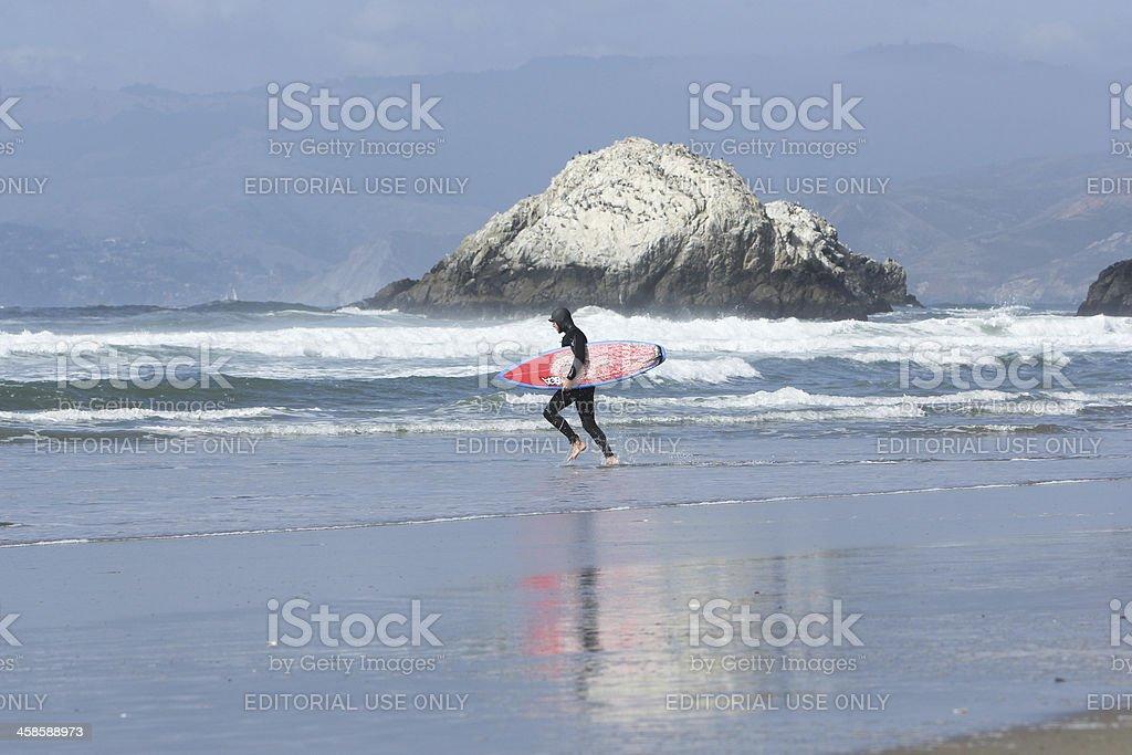 Seal Rocks in San Francisco, California royalty-free stock photo