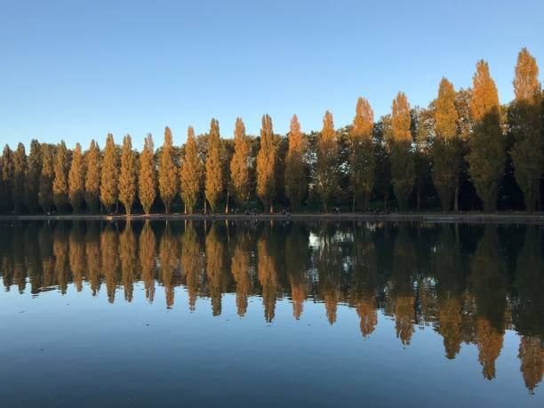 Sceaux Parc at Ile de France A sunny winter day at Sceaux parc with tree reflexion in the water ile de france stock pictures, royalty-free photos & images
