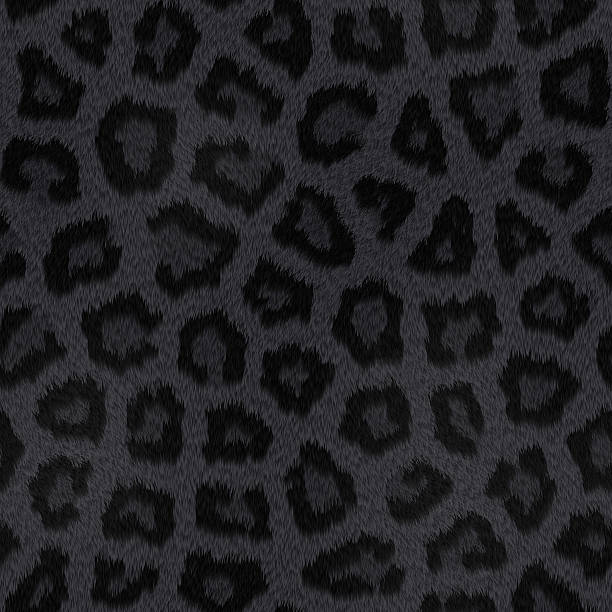 Seamless Black Panther Fur with Spots​​​ foto