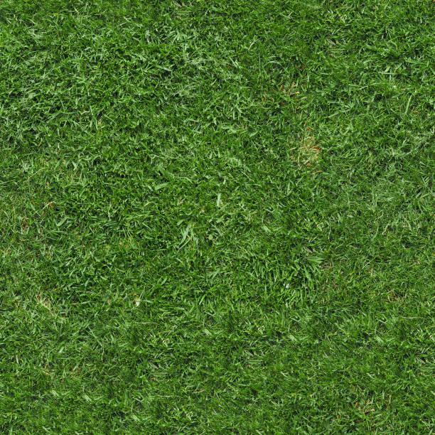 seamless green grass texture background
