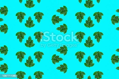 seamless green leaves pattern on blue background. Top view flat lay ornament