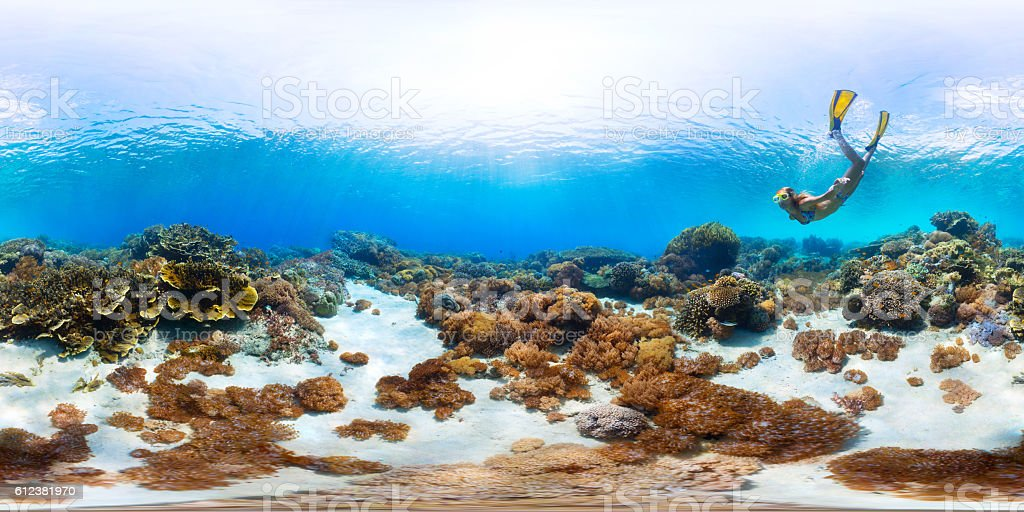Seamless panorama of the sea floor stock photo